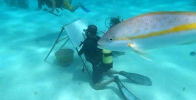 sandor gonzalez el artista cubano que pinta bajo del mar